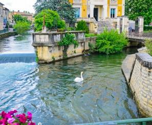 Avignon et le pays des Sorgues